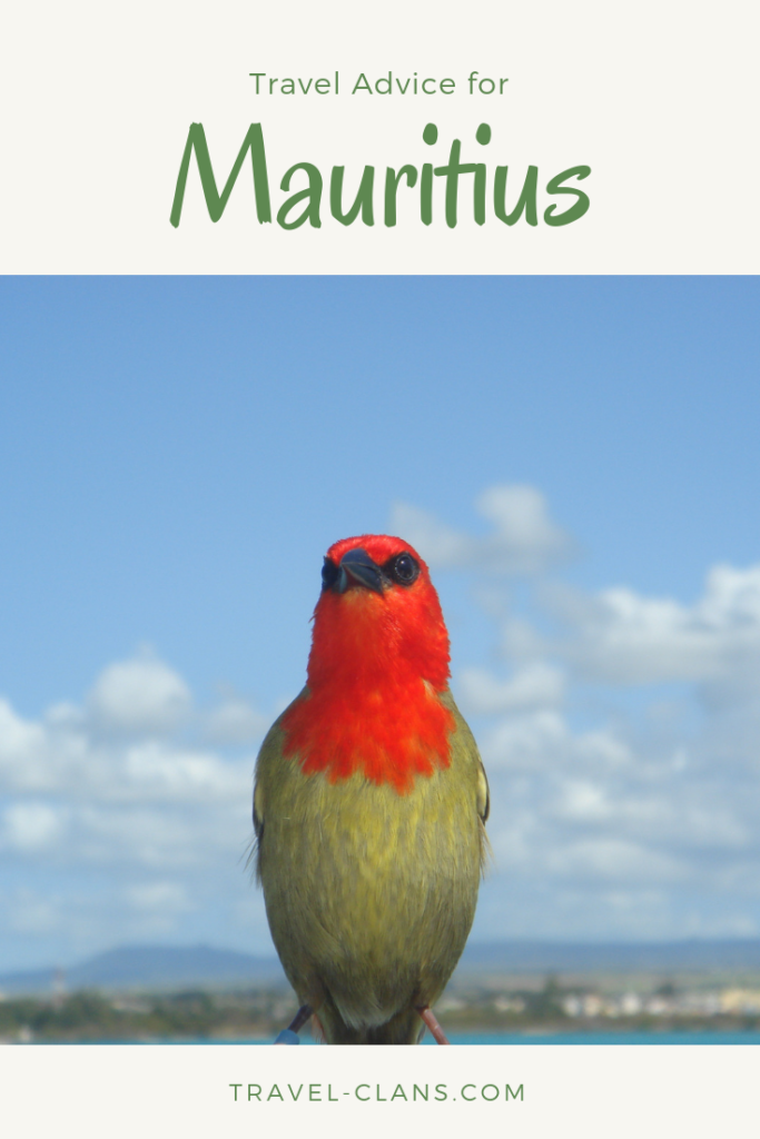 Travel Advice for Mauritius Pin