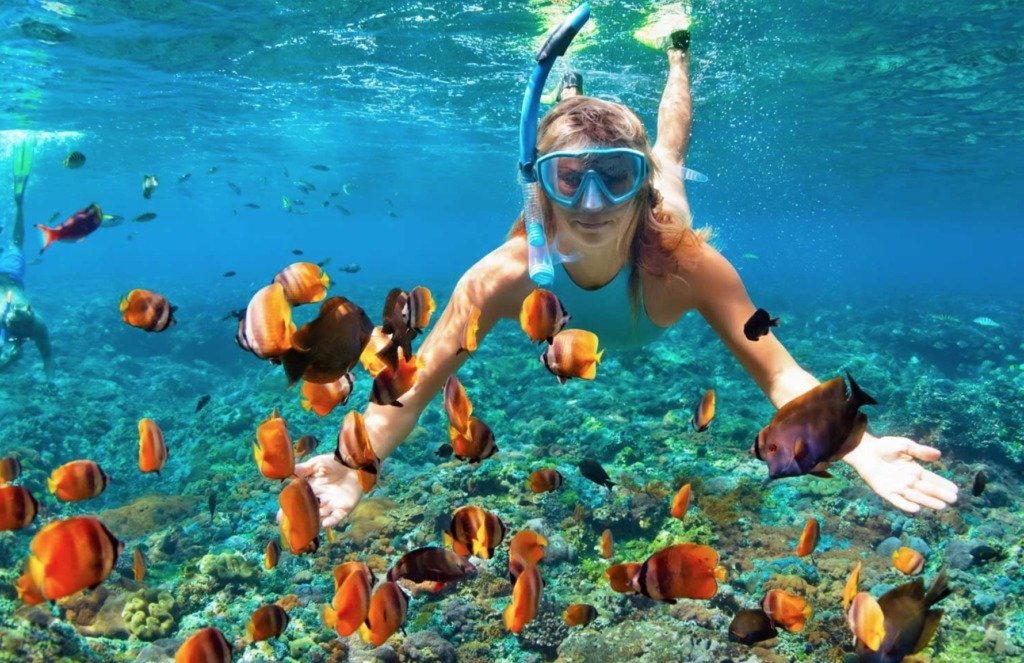Best Snorkeling in the World: Maui, Hawaii #travelclans #snorkel #snorkeling #maui #seekmoments  #postcardsfromtheworld #photographyislifee #getoutstayout #optoutside #beachbum #tropicalisland #lovetheocean #foreversummer