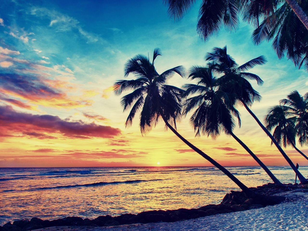 A typical sunset on Barbados #travelclans #beaches #caribbean