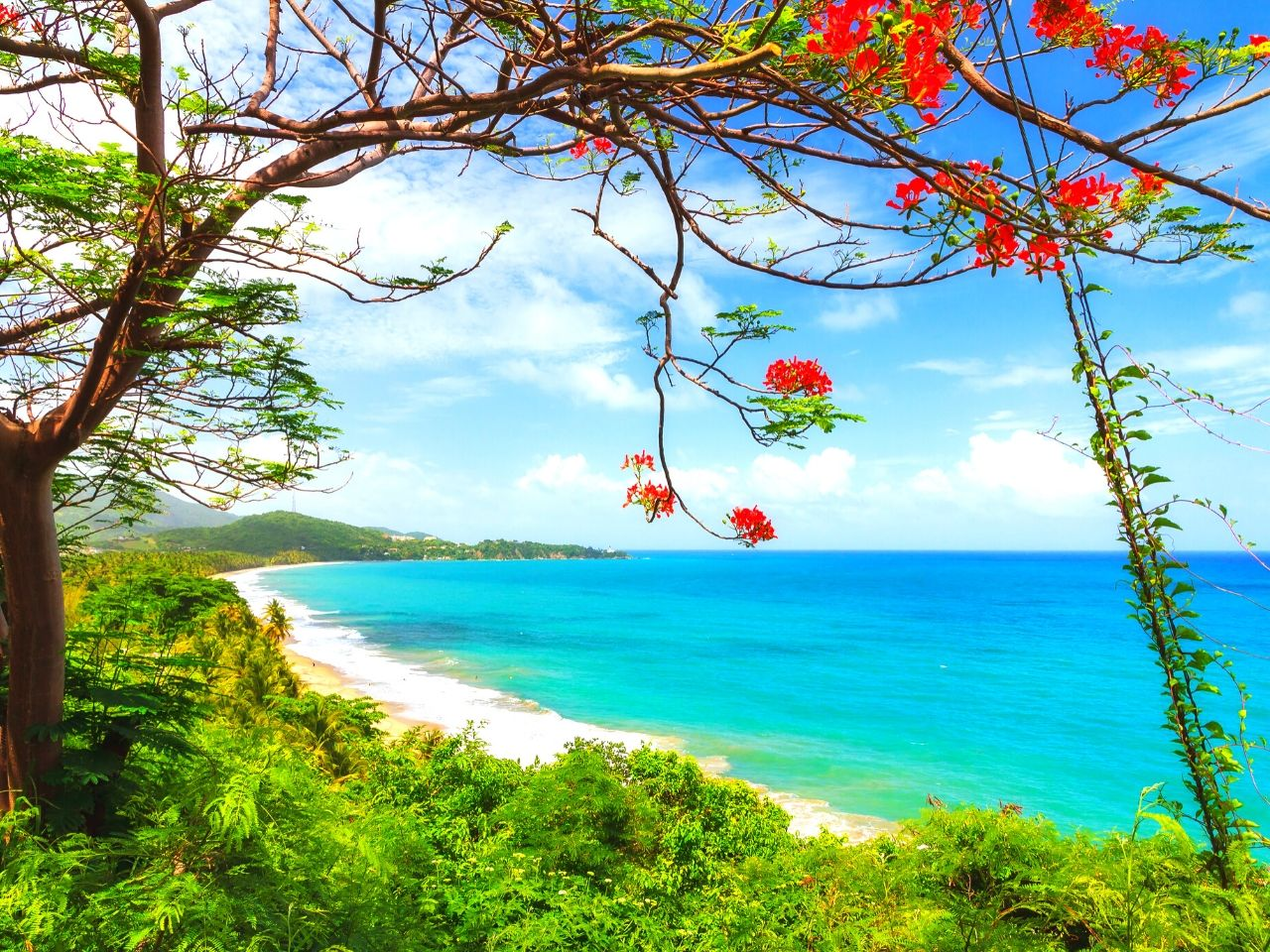 Puerto Rico is in The Top 10 Best Caribbean Islands to Visit in 2020