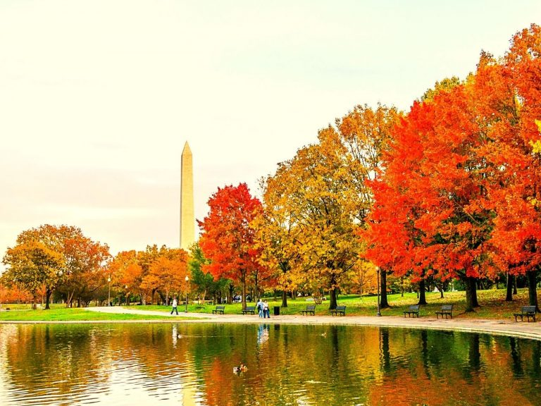 The vibrant colours of fall foliage at the nation's capital