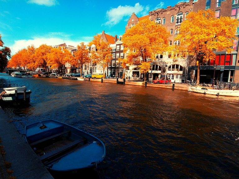 The canals of Amsterdam lined with yellow of fall foliage