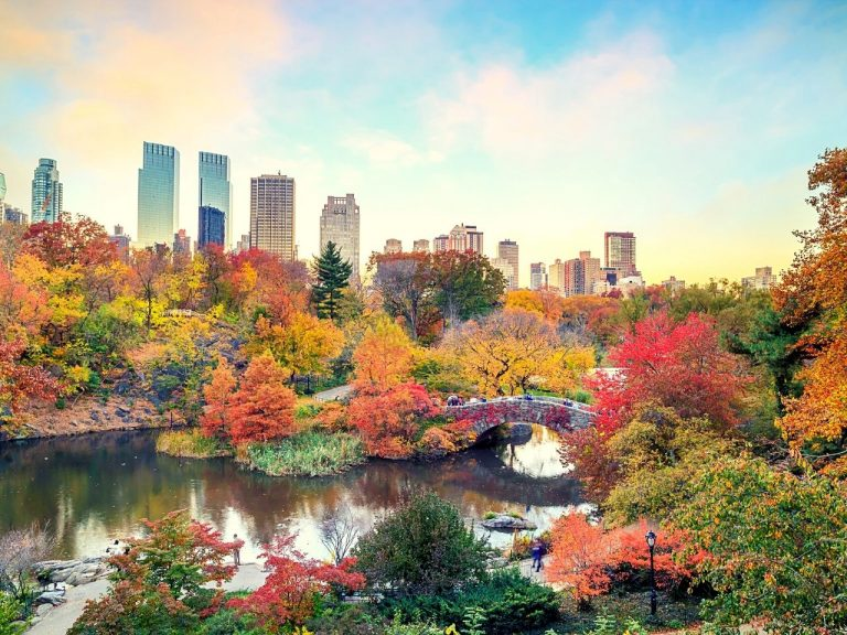 Enjoy the colours of fall at Central Park in NYC