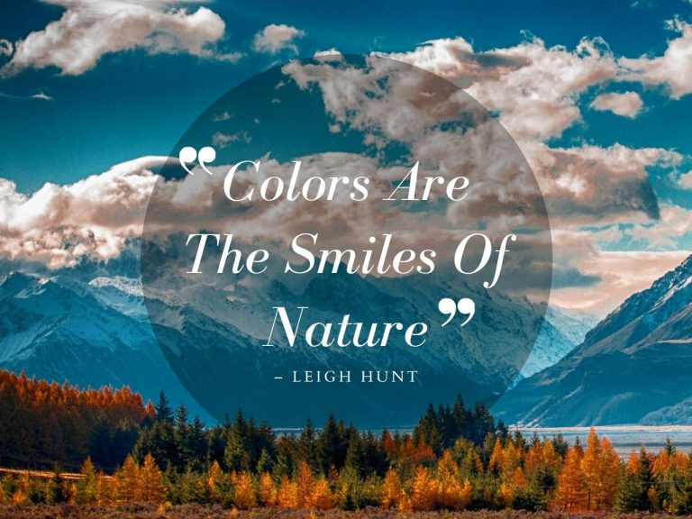 Exploration Quotes About Being Outdoors in Nature